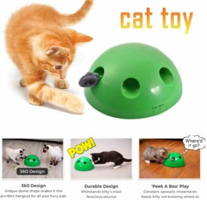 first toy for your adopted cat