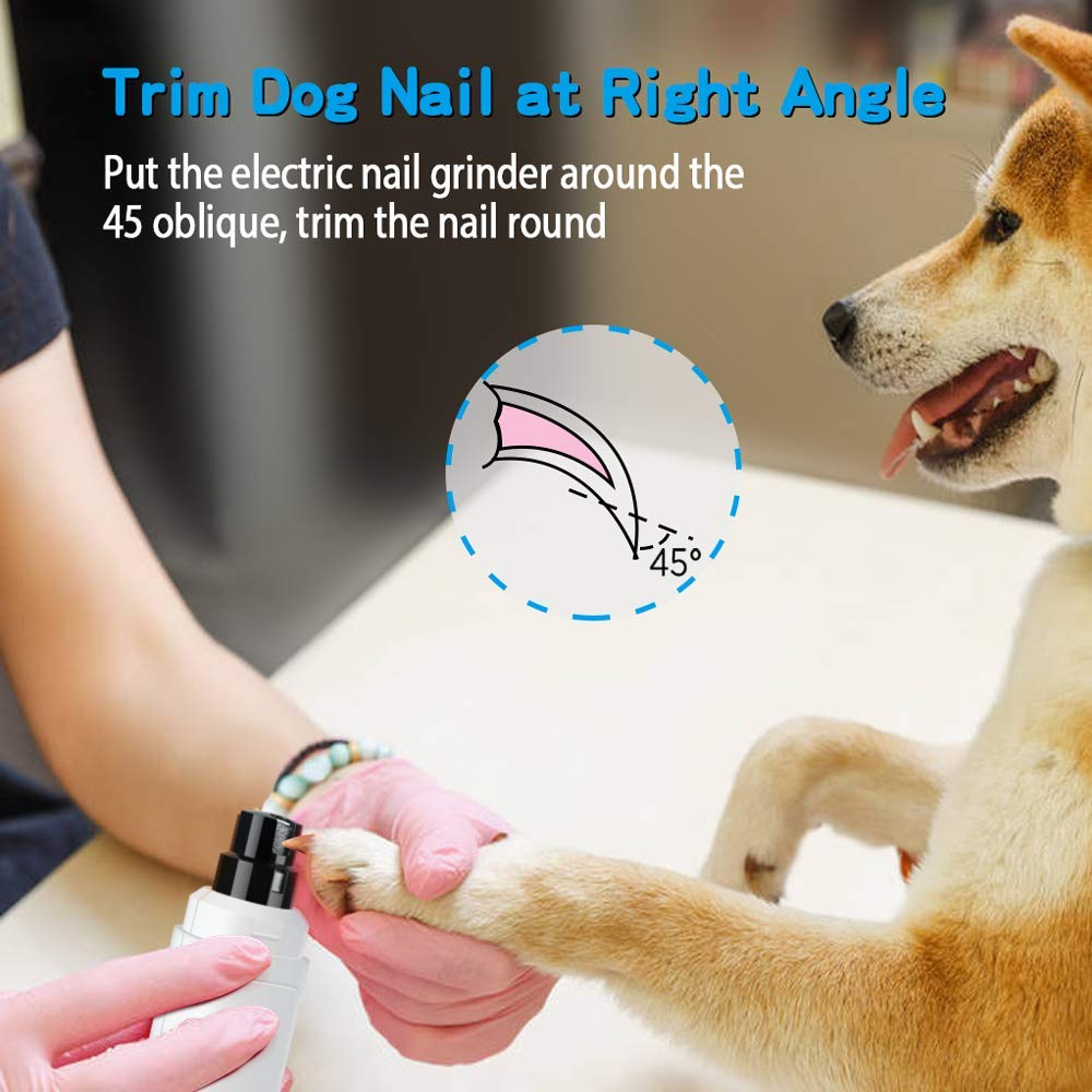 cut dogs and cats nails