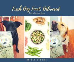 Is it more interesting and economical to prepare your dog's food yourself?