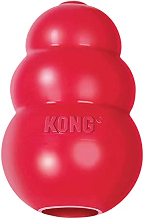kong toy for crate training a puppy