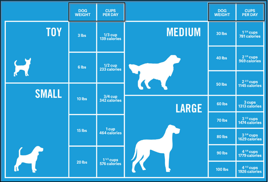 how much should i feed my dog ?