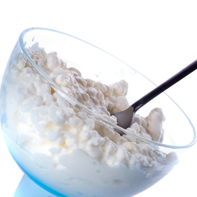 can dogs eat cottage cheese ?