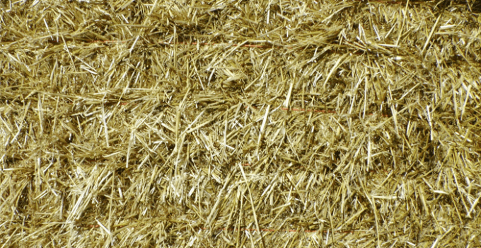 straw cannot be given as hay for rabbits