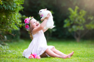 is a bunny the right pet for me ?