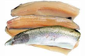 trout meat for axolotls